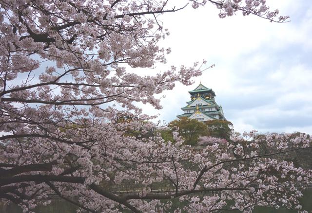 大阪城の花見に屋台はある?西の丸庭園の屋台を画像で紹介